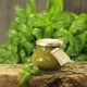 Basilikum-Pesto von essArt